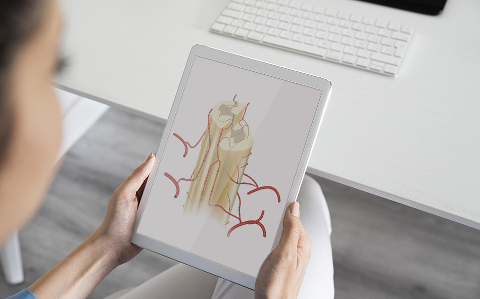 benefits of medical illustration services